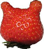 Erdbeere Gesicht